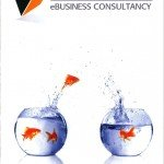Marketing and branding text for consultancy