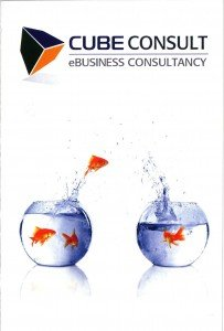 Marketing and branding text for ebusiness consultancy