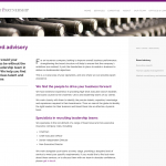 Website text for executive search firm